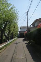 道路(周辺)